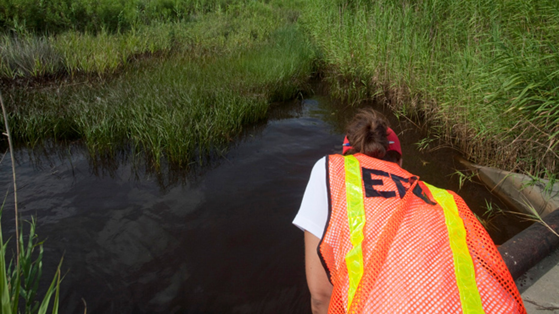 In this July 7, 2010 file photo, an EPA worker looks at oil from the Deepwater Horizon spill which seeped into a marsh in Waveland, Miss.