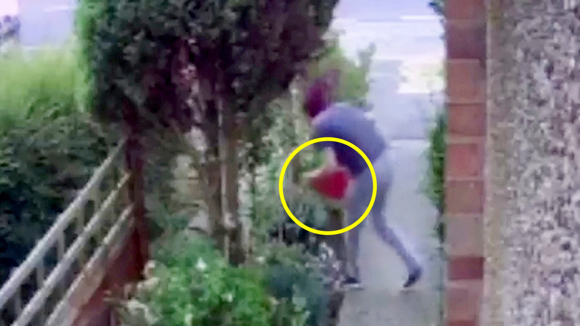A thief was caught on camera doing a face plant while trying to steal a garden gnome.