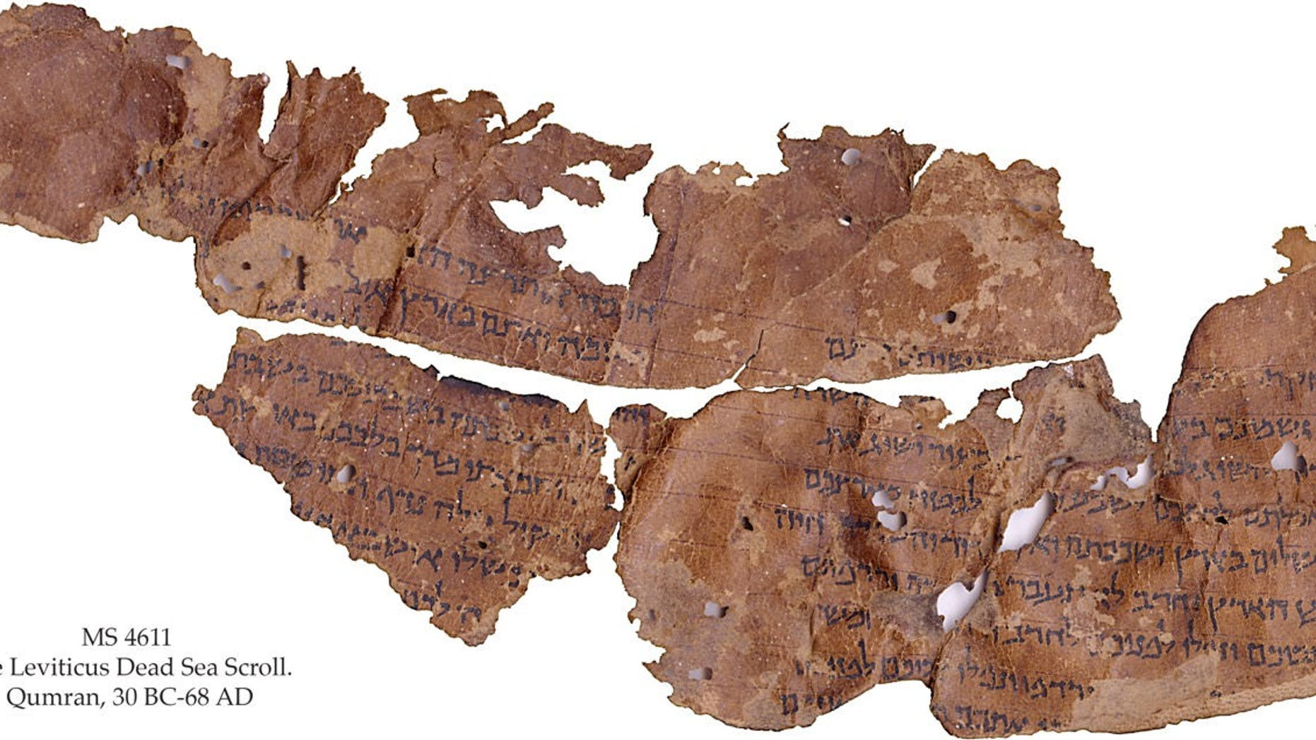 This scroll fragment preserves parts of the Book of Leviticus, in which God promises to reward the people of Israel if they observe the Sabbath and obey the 10 commandments.   (Credit: copyright The Schøyen Collection, Oslo and London, MS 4611)
