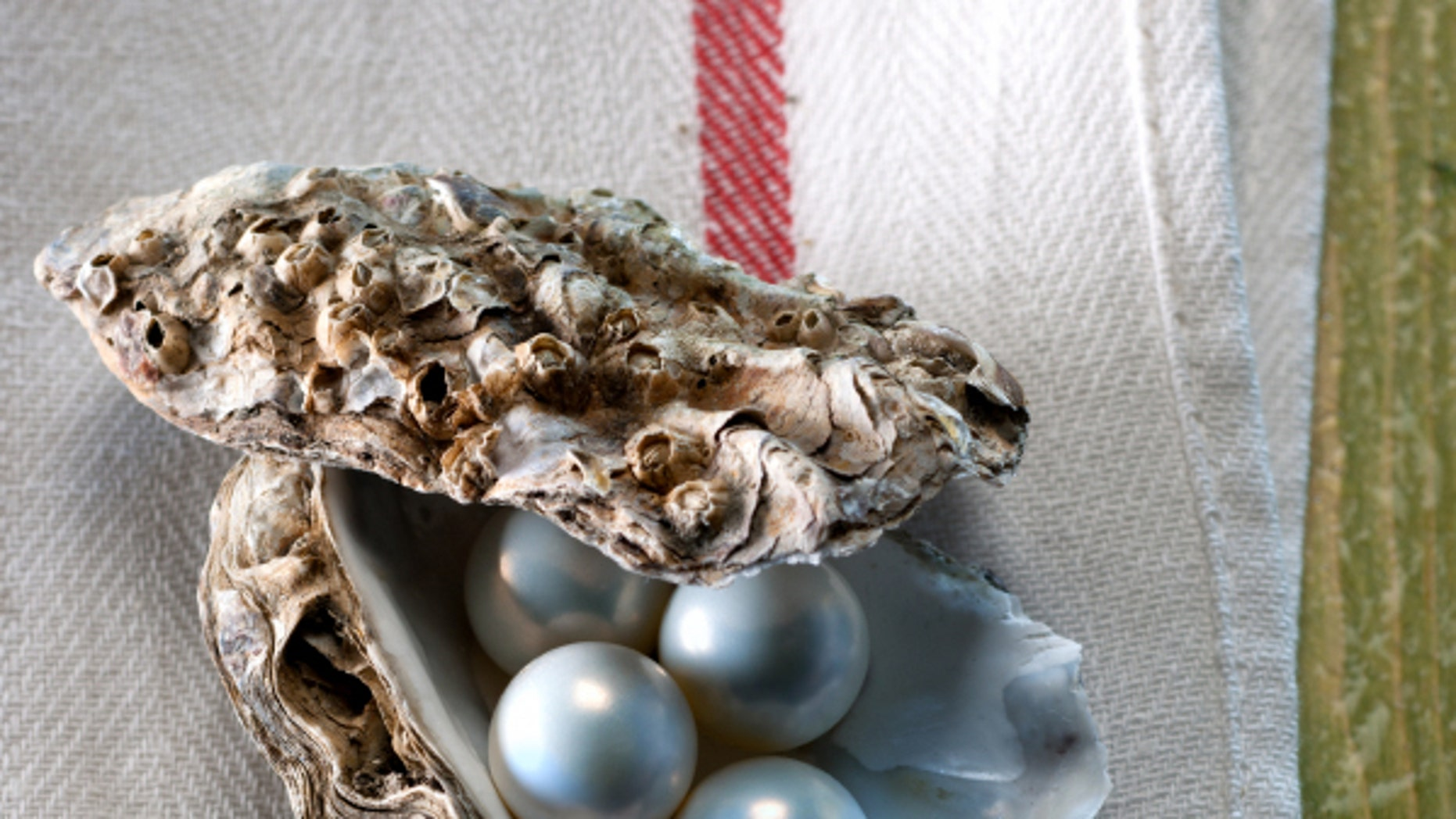 A Tennessee diner found multiple pearls in her oyster lunch.