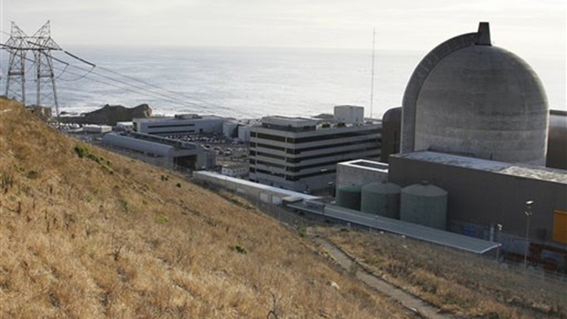 This Nov. 3, 2008, file photo shows one of Pacific Gas and Electric's Diablo Canyon Power Plant's nuclear reactors in Avila Beach, Calif.