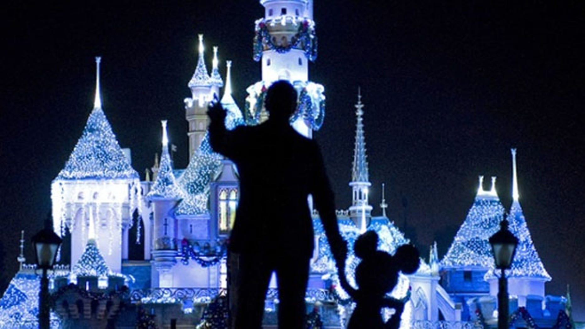 Disney World has told visitors not to bring their selfie sticks on rides.