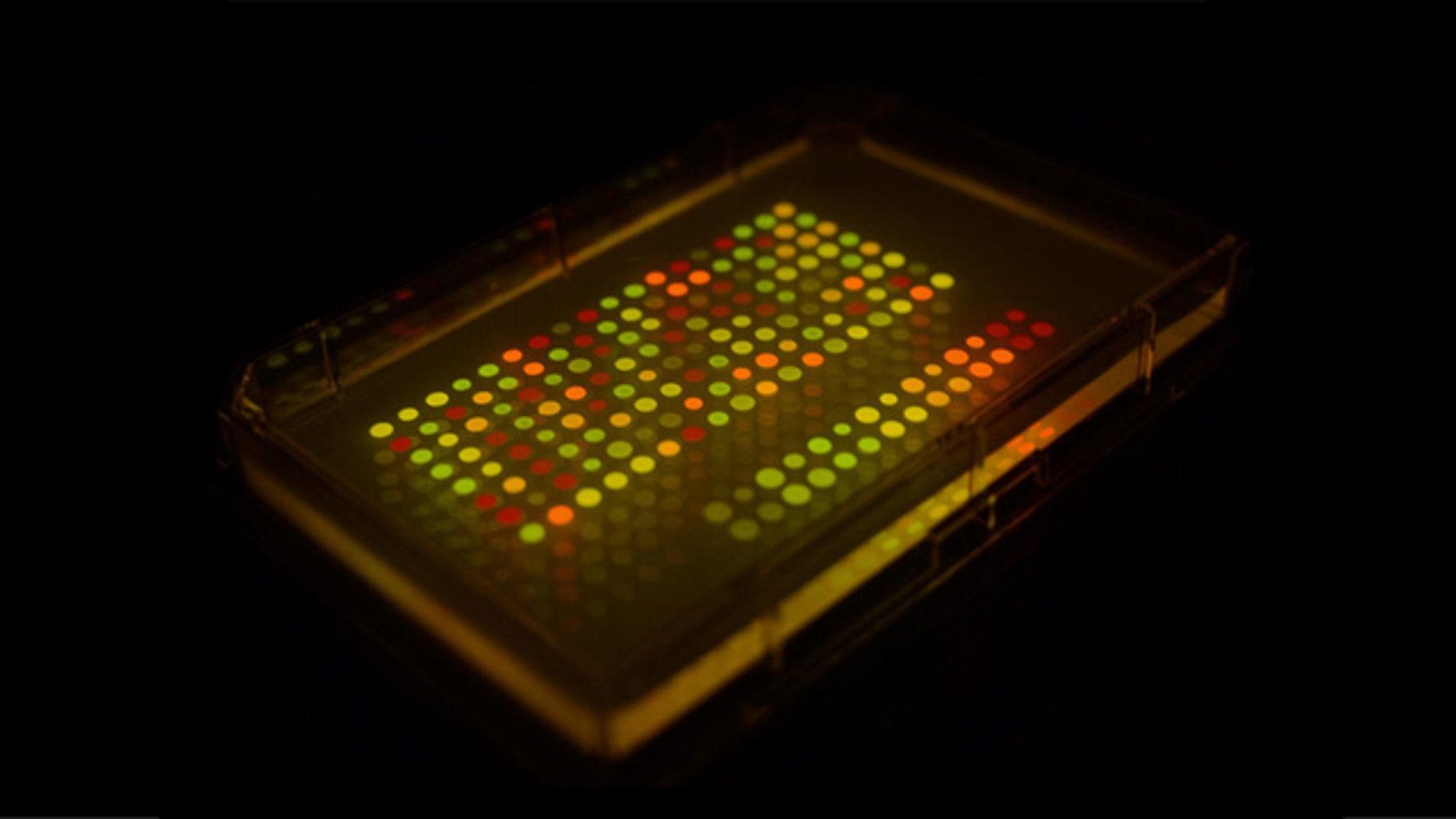 Scientific espionage: microbial messaging.