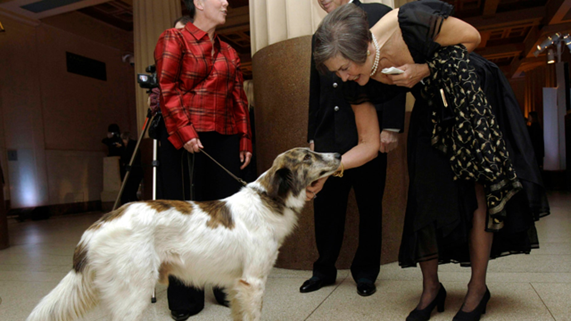 Dec. 9: Guest Ruth Hoffman, right, pets Rufus, a stray Afghan dog credited with saving the lives of 50 U.S. soldiers based in Afghanistan, before the dog was honored at The Animal Medical Center's Top Dog Gala at the Museum of Natural History in New York. (AP)