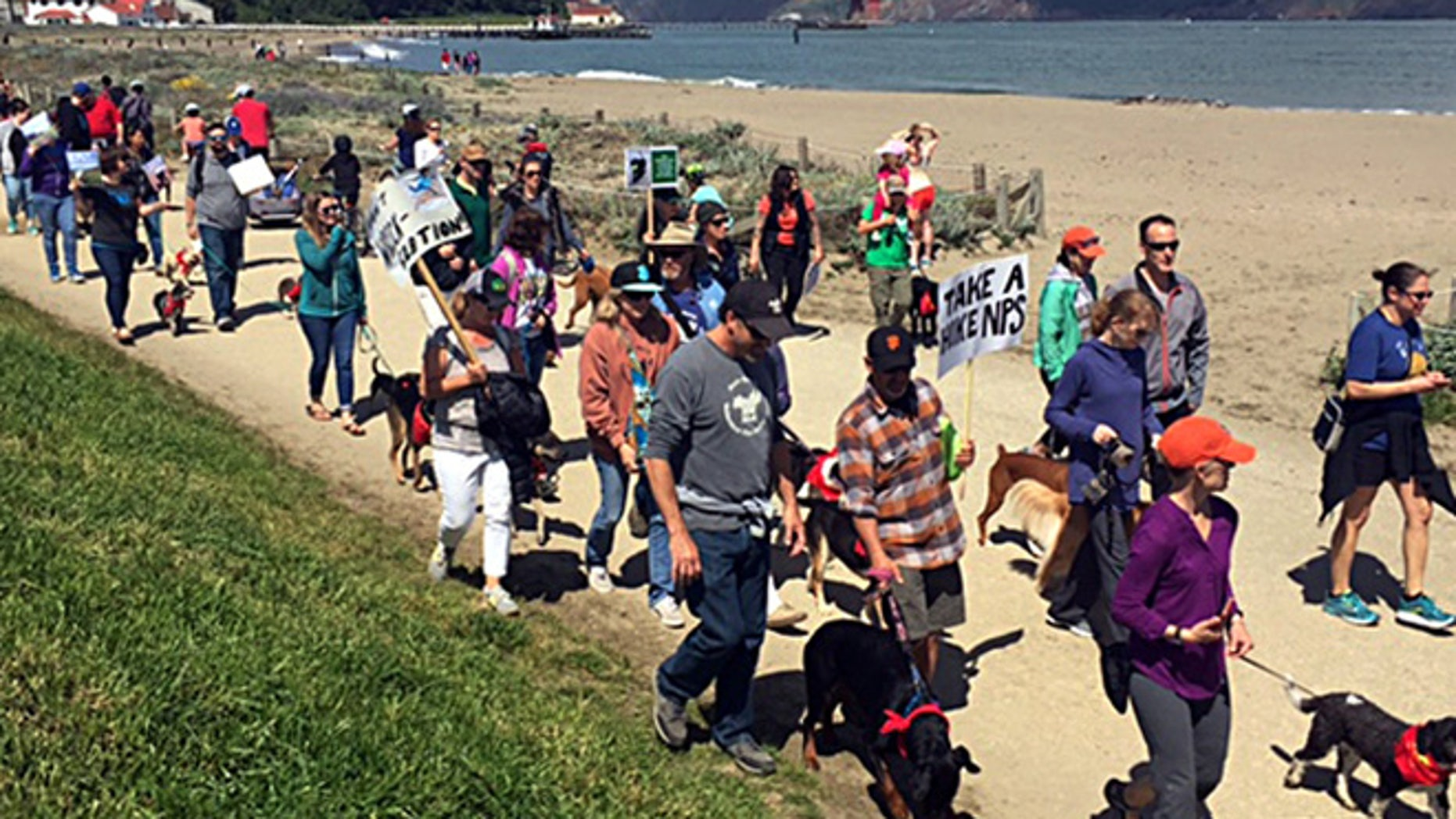 Hundreds of dog owners march with their four-legged pooches to protest the National Park Service's proposed limits on dog walking at Crissy Field in San Francisco's Golden Gate National Recreation Area Saturday, April 23, 2016. (Kevin Schultz/San Francisco Chronicle via AP) MANDATORY CREDIT PHOTOG & CHRONICLE; MAGS OUT; NO SALES