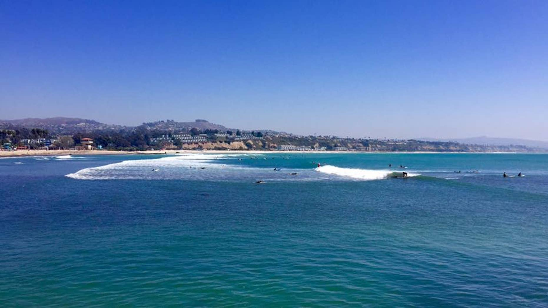 A surfer was found face down in the water at Doheny State Beach in Dana Point, Calif., on Tuesday and later died, a report said.