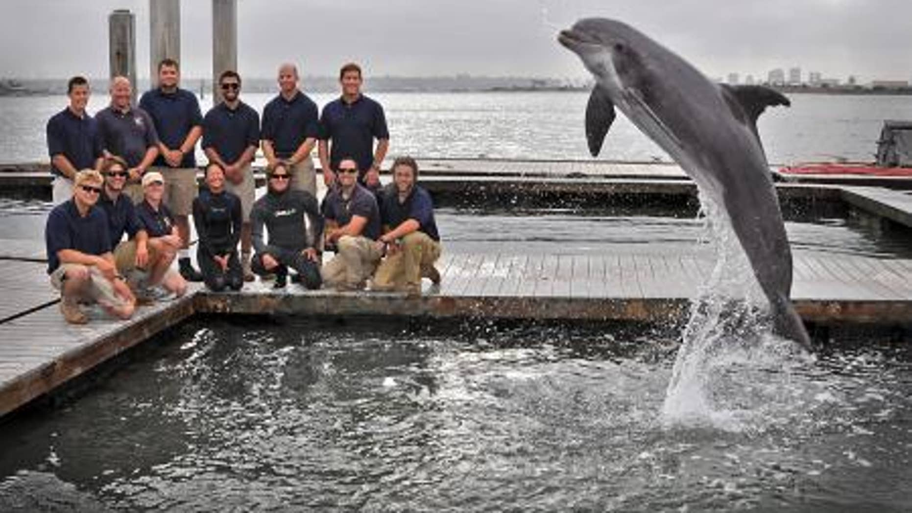 Members of the Space and Naval Warfare Systems Center Pacific Marine Mammal Team pose May 15, 2013, with one of the Navy's specially trained Atlantic bottle-nosed dolphins. The team, along with the dolphin, are responsible for the discovery and