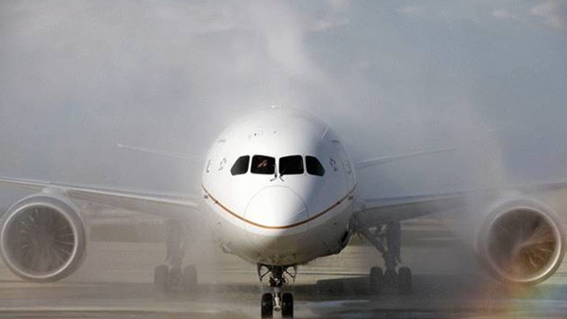United Airlines said Monday it plans to fly the Boeing 787 Dreamliner for the first time after its grounding on May 31.