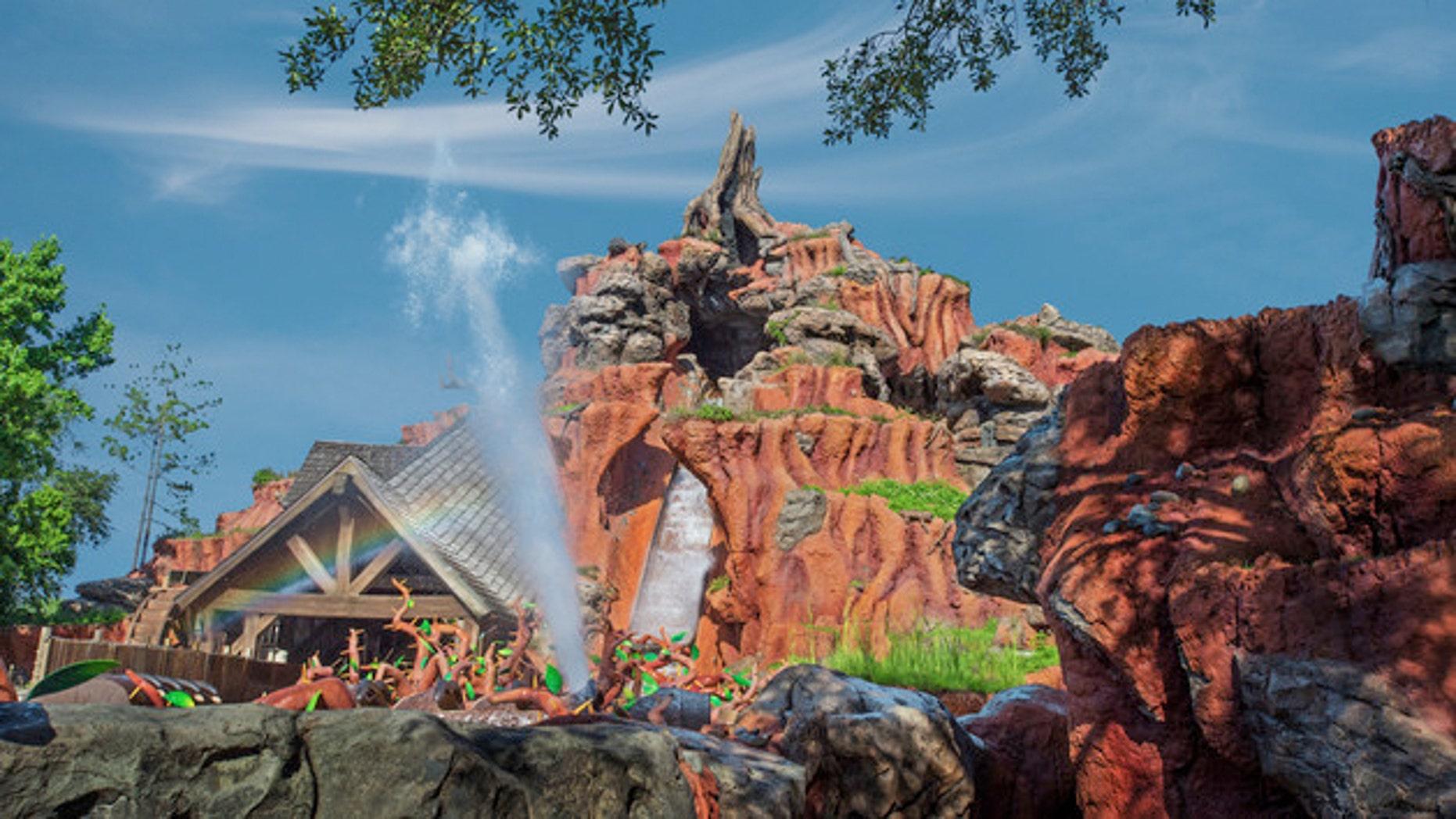 Disney's Splash Mountain located in Magic Kingdom in Walt Disney World in Orlando.