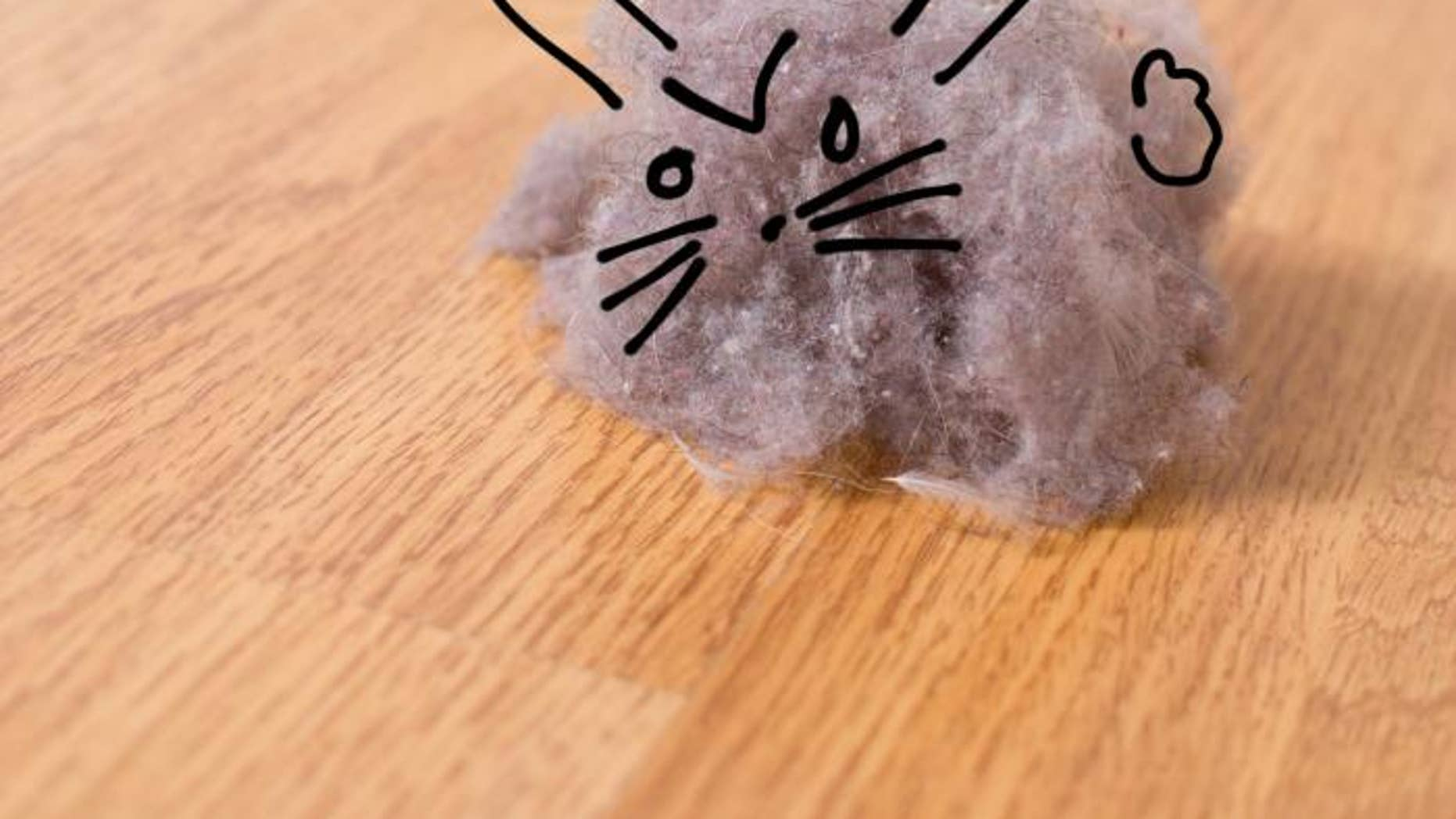 8 easy ways to eliminate dust in your home | fox news