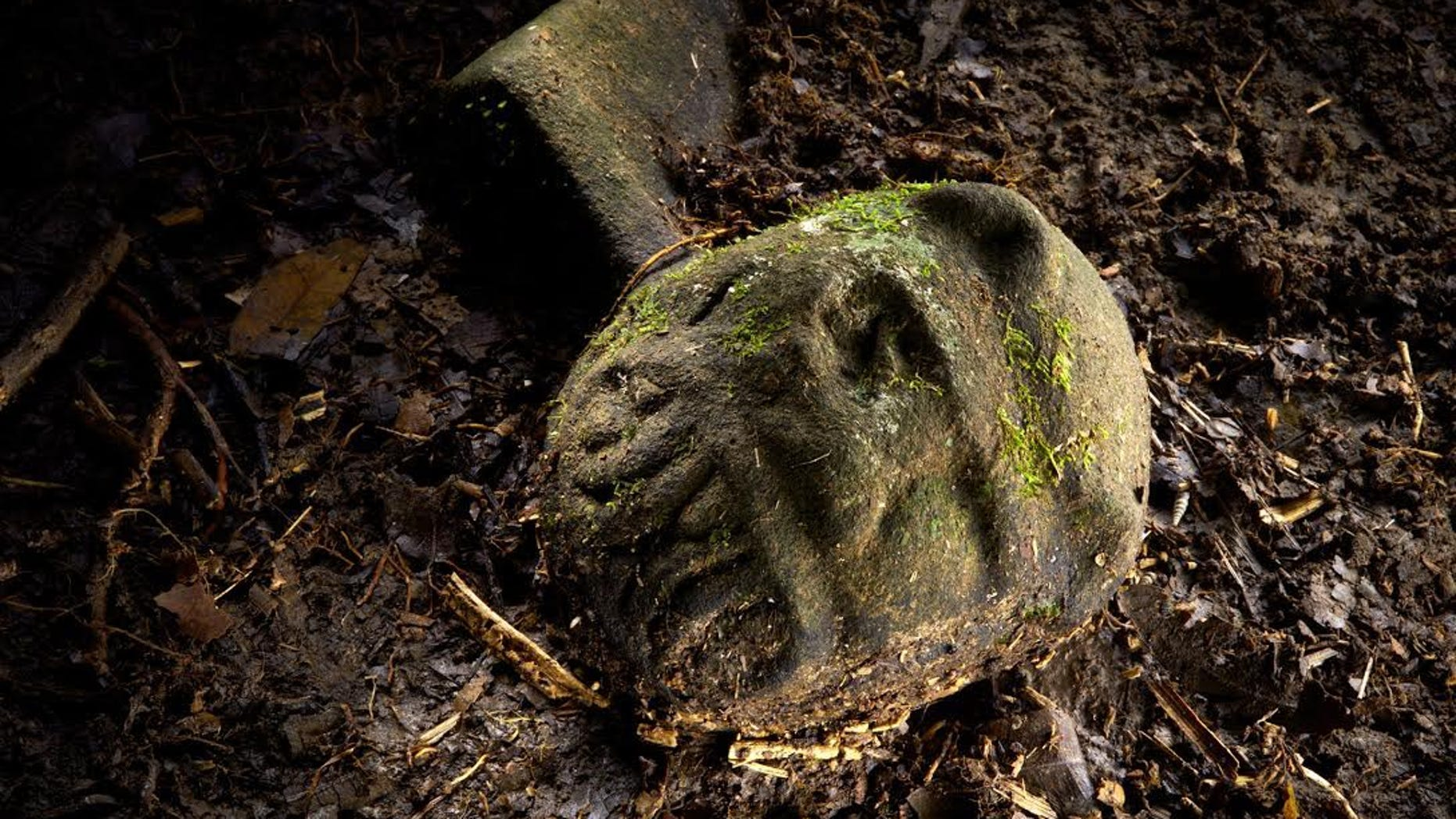 A cache of at least 51 artifacts, found partly exposed, lie in a cache in a secret location in the Mosquitia jungle in Honduras.