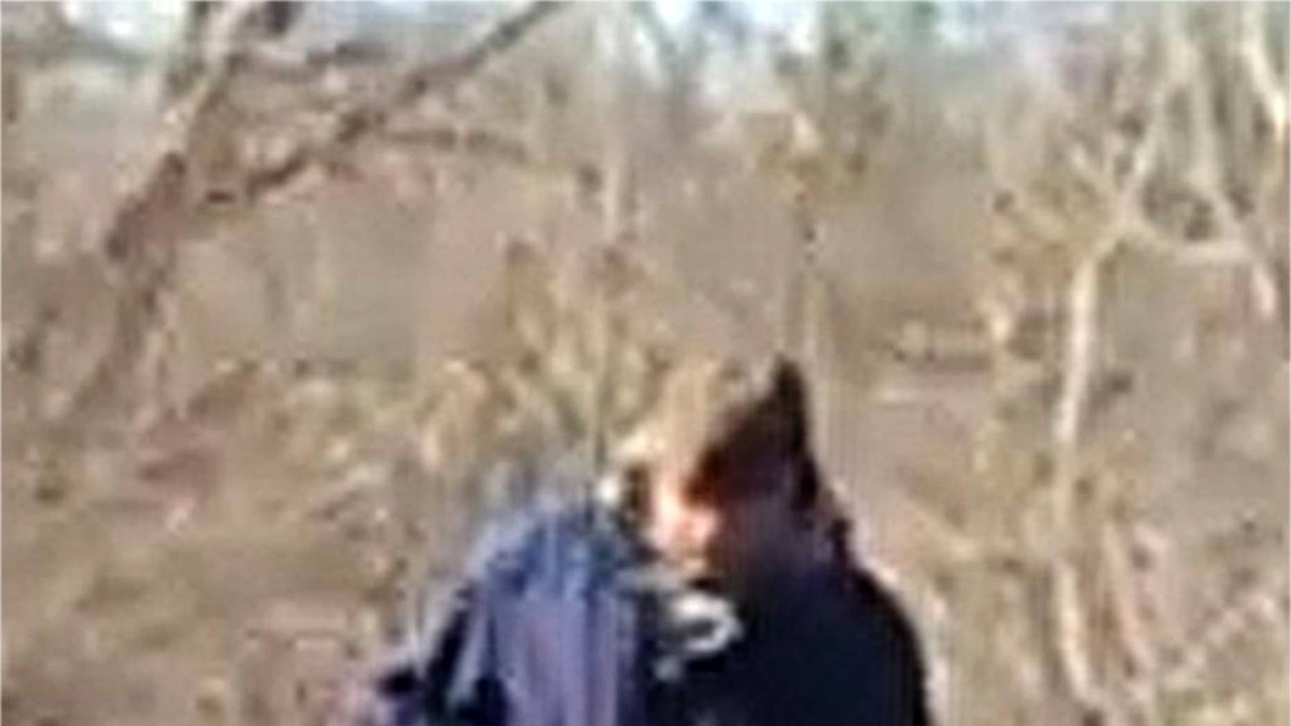 This Feb. 13, 2017, photo released by the Indiana State Police shows a man walking along the trail system in Delphi, Ind. Indiana authorities want to talk to the man in connection with the killings of two teenage girls. He was photographed on the trail system around the time Liberty German and Abigail Williams were dropped off Monday to go hiking. (Indiana State Police via AP)