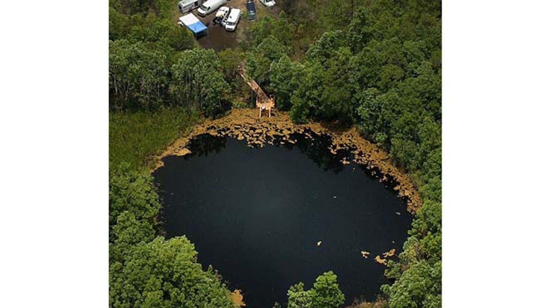 The Eagle's Nest dive site in Weeki Wachee, Fla.