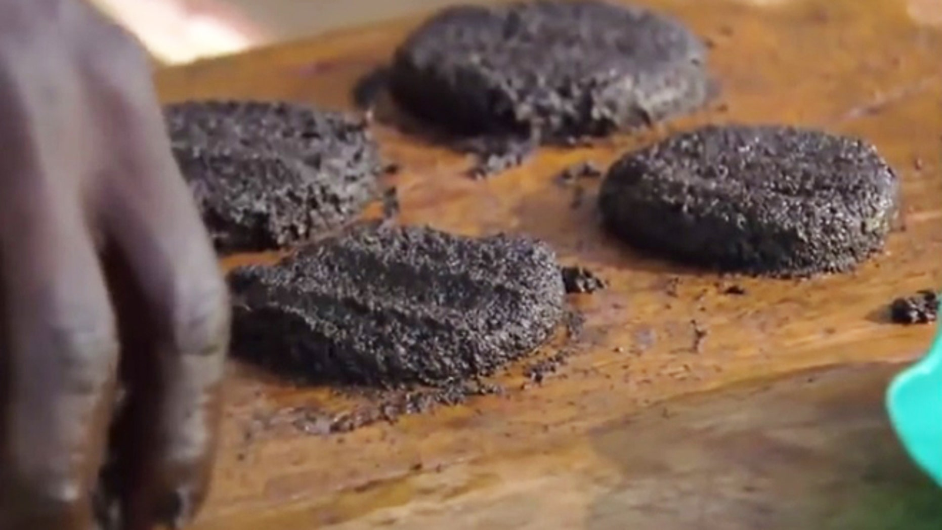 Making burgers from mashed up flies.