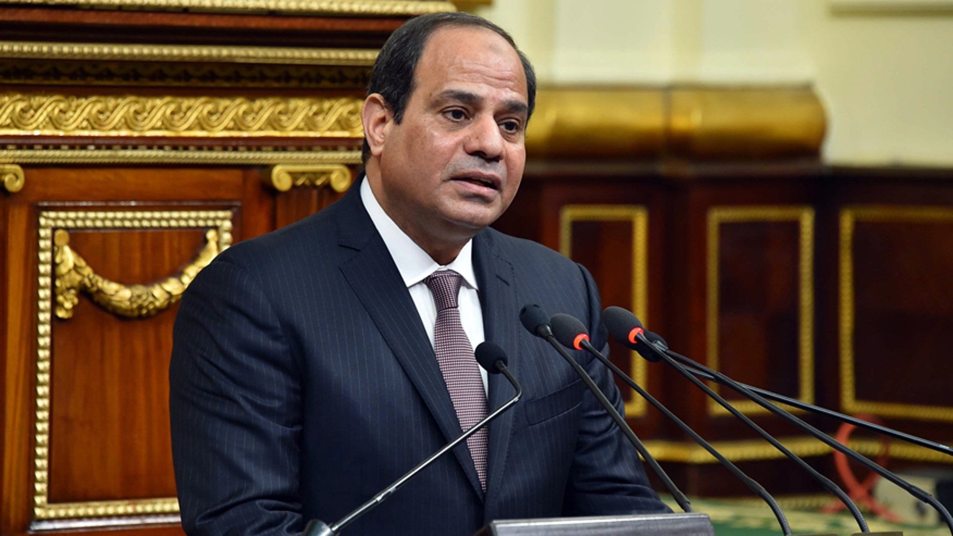 Feb. 13, 2016: In this photo provided by Egypt's state news agency MENA, Egyptian President Abdel-Fattah el-Sissi, addresses parliament in Cairo, Egypt.