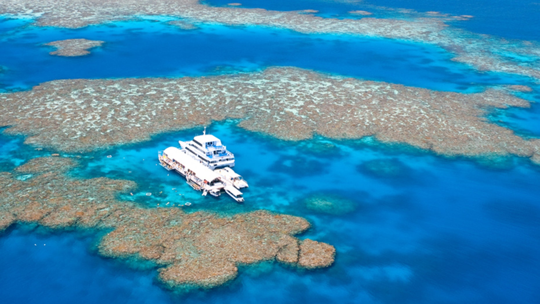The Great Barrier Reef is the world's largest coral reef ecosystem.