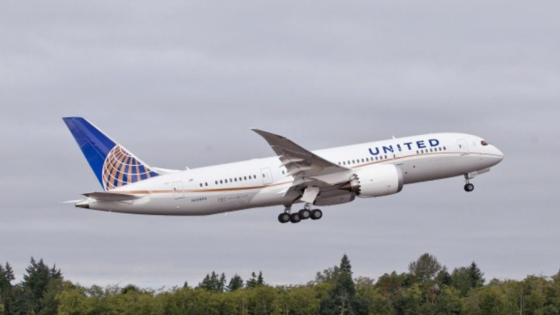 A United passenger allegedly became disgruntled when denied extra peanuts and crackers.