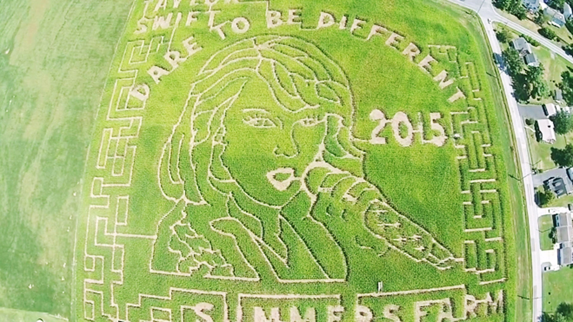 This 12-acre corn maze features Taylor Swift's face.