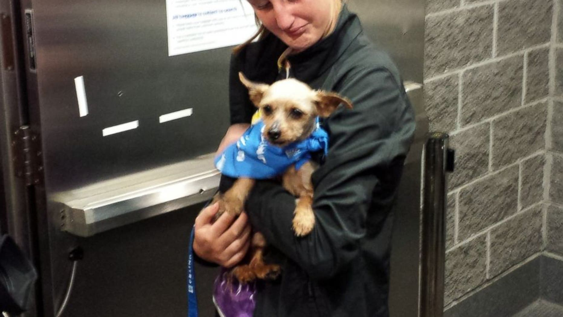 Karisa Lambert of New Orleans is reunited with her terrier Sam after he went missing for nearly four years.