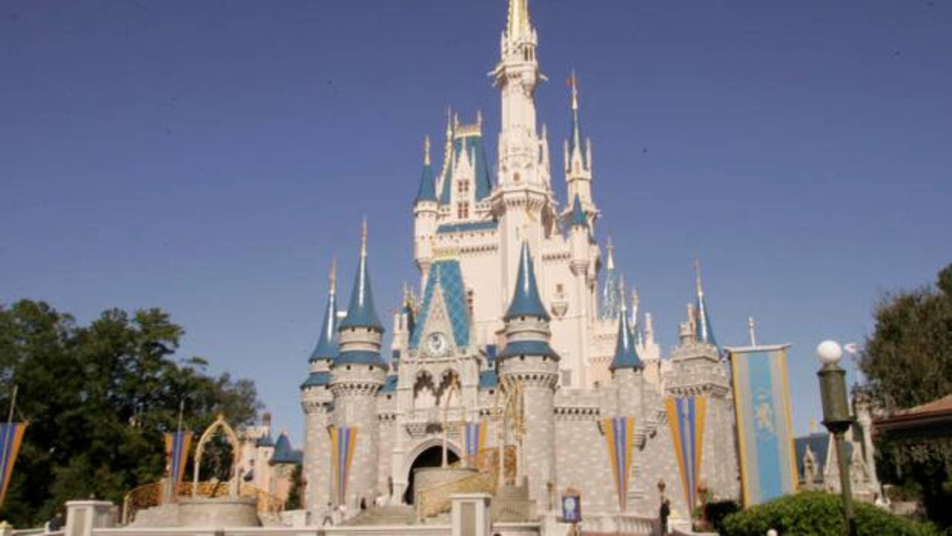 Disney's Magic Kingdom is the most popular theme park in the U.S.
