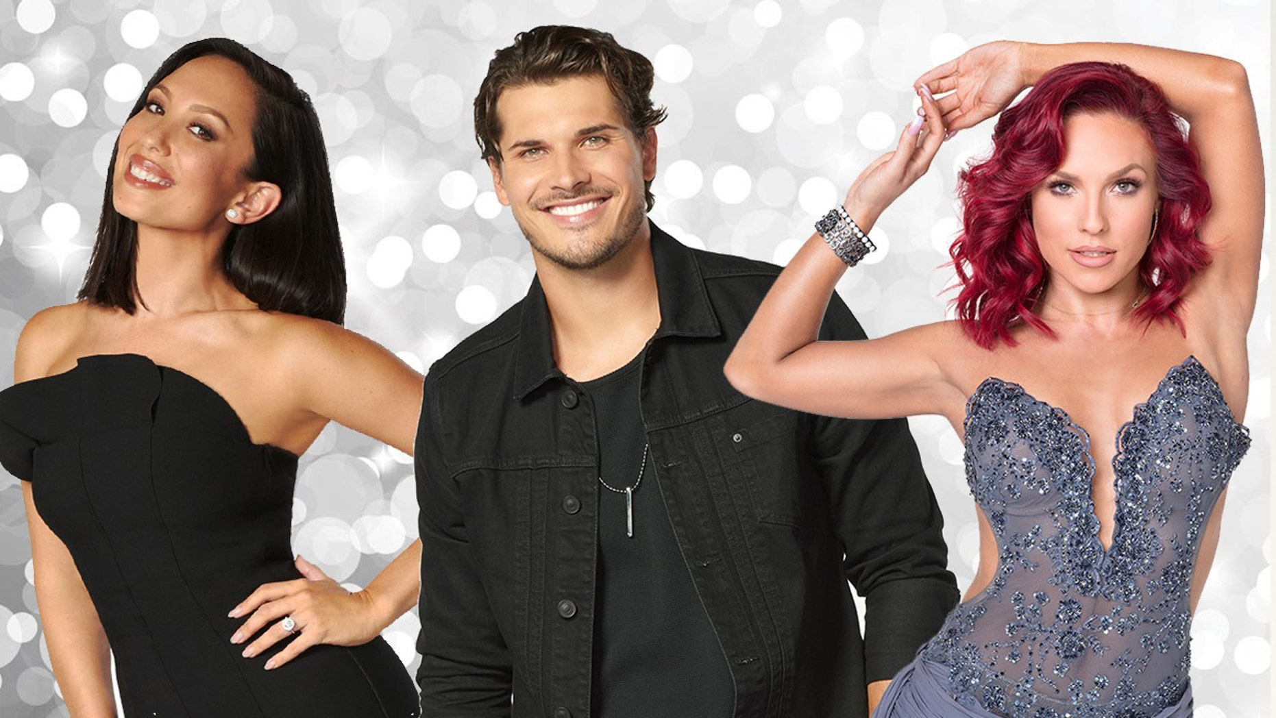 "The pro dancers of the iconic ""Dancing With the Stars"" series reveal the new cast for the show's 27th season."