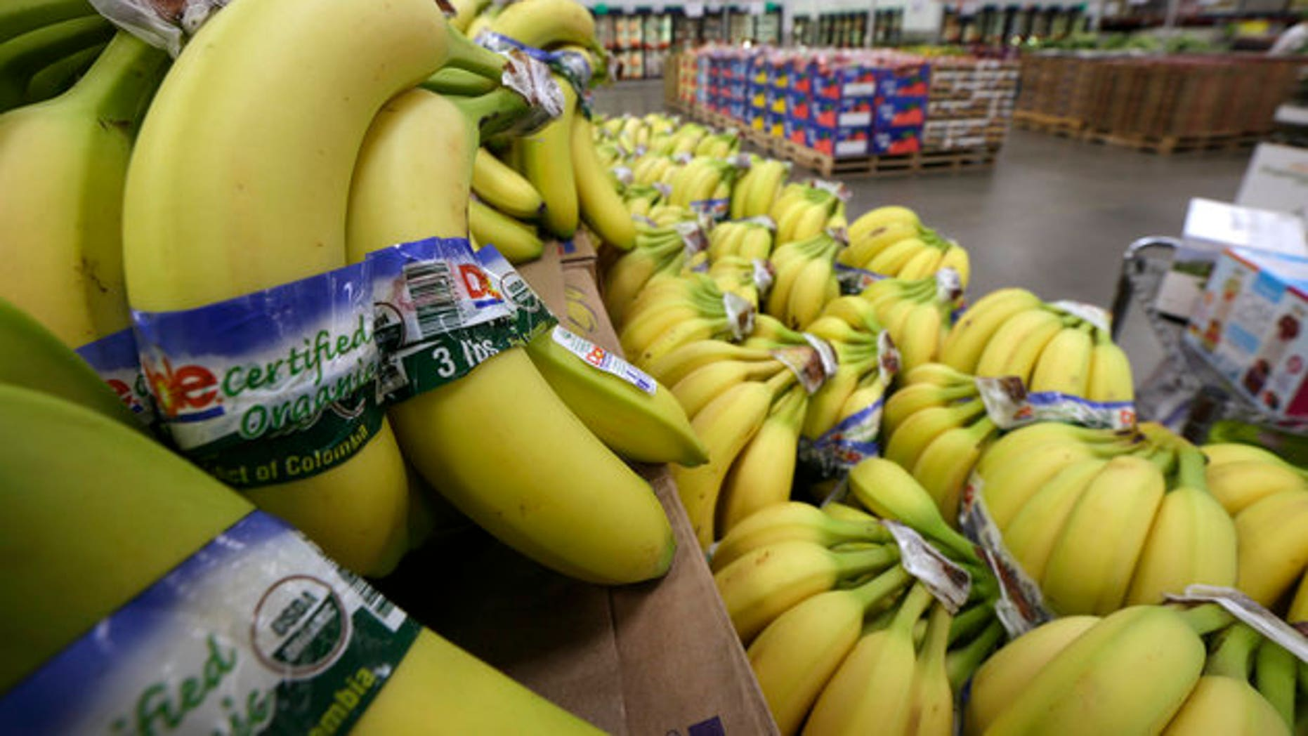 Cavendish bananas are the most popular variety in the U.S. But they are facing a deadly fungal disease compound.