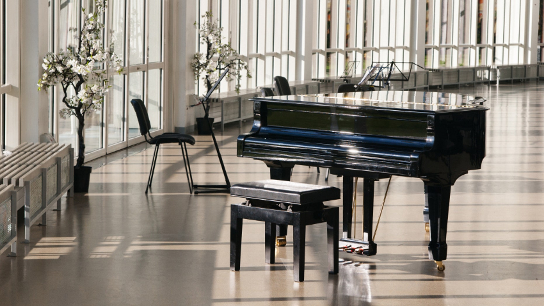 People have stolen large, expensive pianos from hotels.