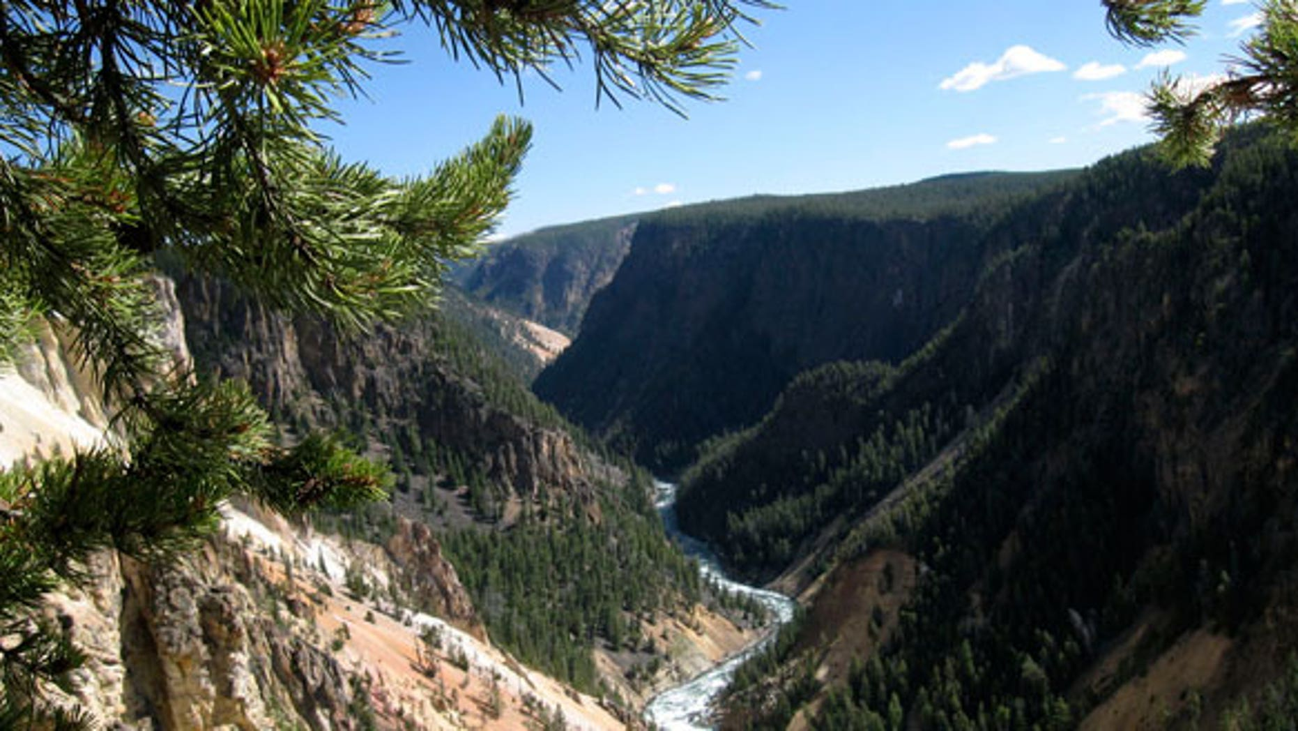 A view of Yellowstone National Park.