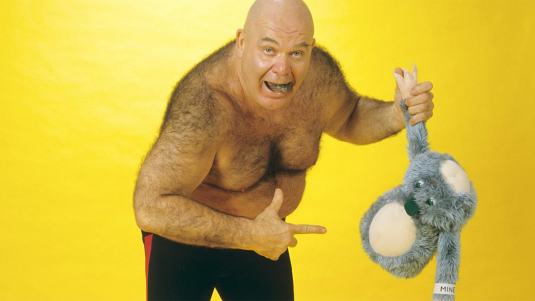 """Professional wrestler George """"The Animal"""" Steele died at age 79.Steele, whose real name is William James Myers was one of the WWE's most wild and outrageous stars."""