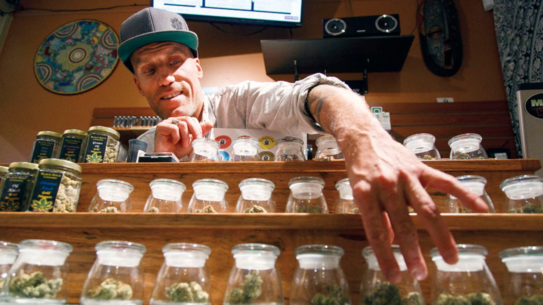 FILE- - In this Sept. 28, 2015, file photo, Shane Cavanaugh, owner of Amazon Organics, a pot dispensary in Eugene, Ore., arranges the cannabis display in his store. The government still has many means to slow or stop the marijuana train  and President-elect Donald Trump's nomination of Alabama Sen. Jeff Sessions to be the next attorney general has raised fears that the new administration could crack down on weed-tolerant states. (AP Photo/Ryan Kang, File)
