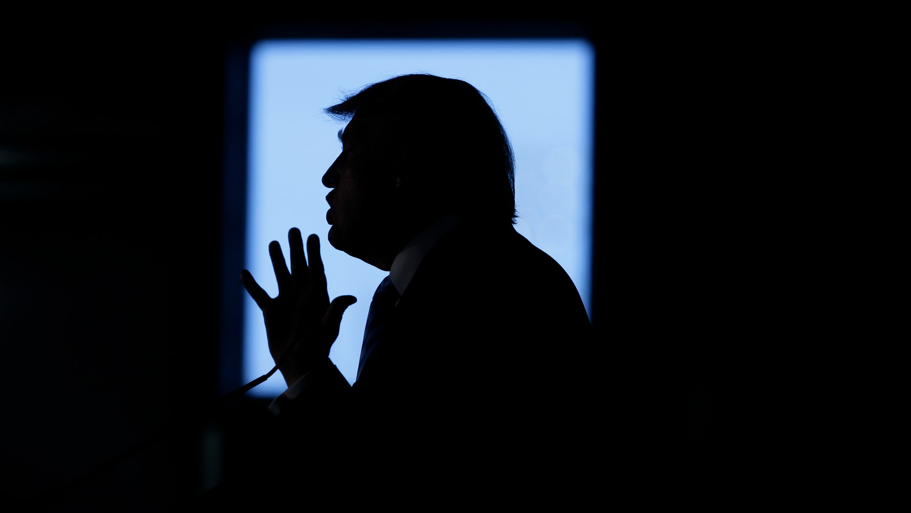 Republican presidential candidate Donald Trump speaks during a campaign rally Saturday, Dec. 5, 2015, in Davenport, Iowa. (AP Photo/Charlie Neibergall)