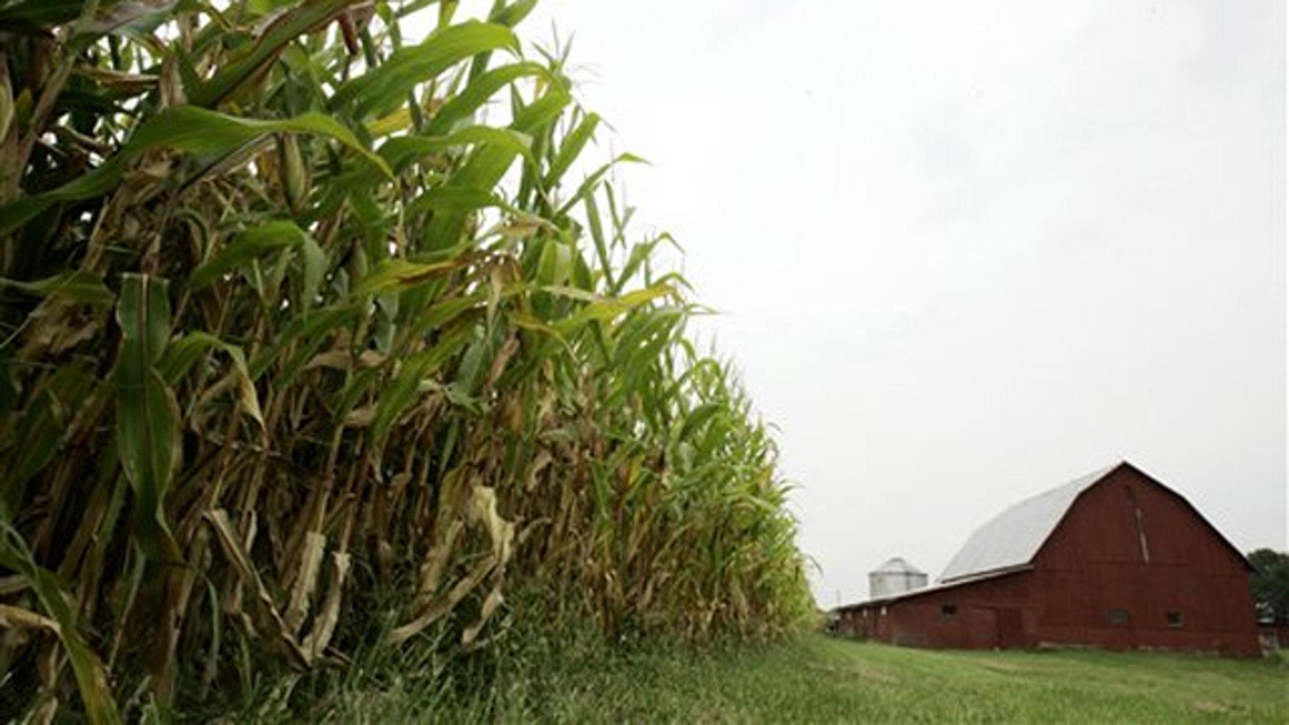 This 2006 file photo shows a farm near Morrow, Ohio. (AP Photo)