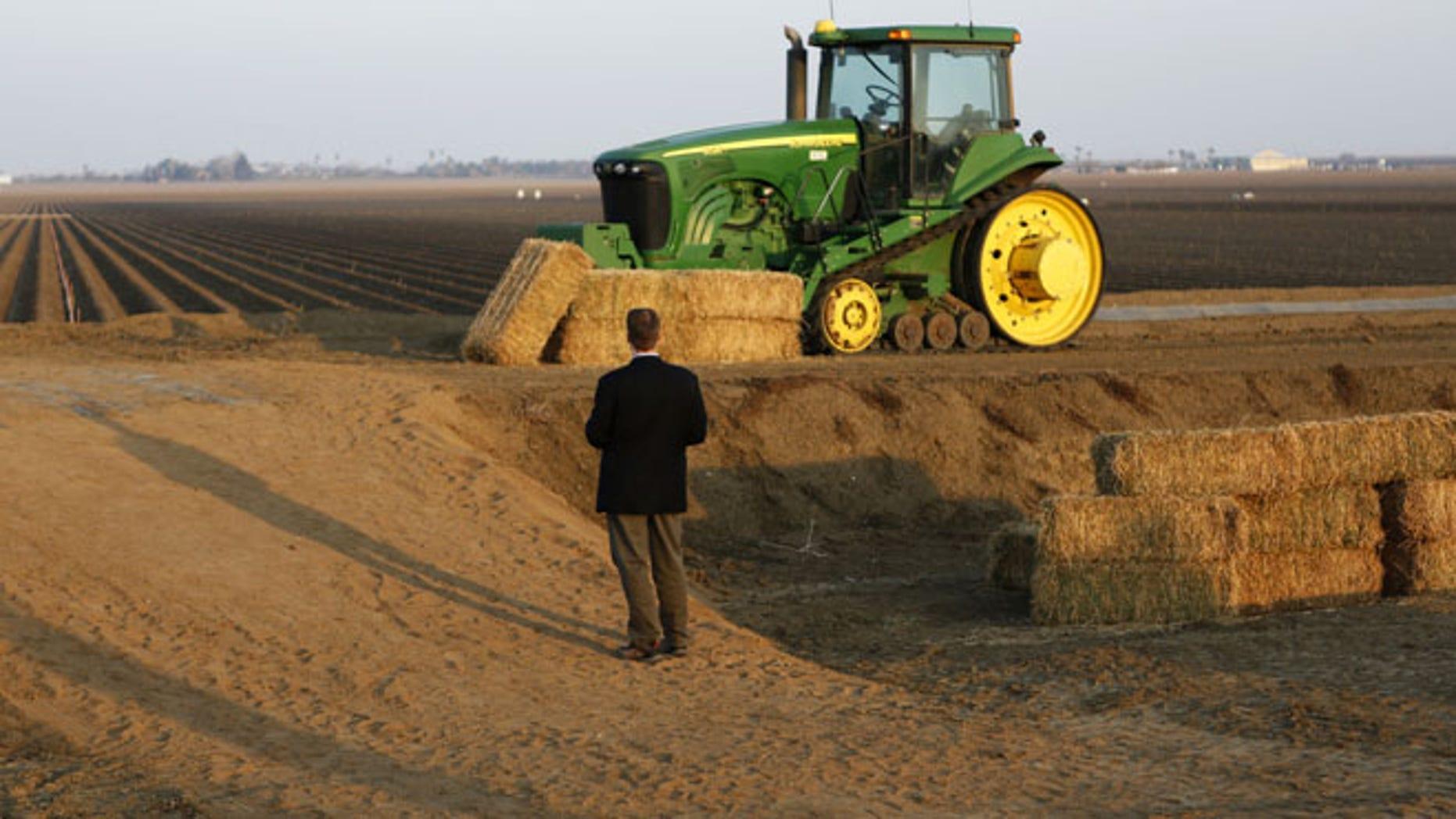 File: Feb. 2014: A  farm field in Los Banos, California.