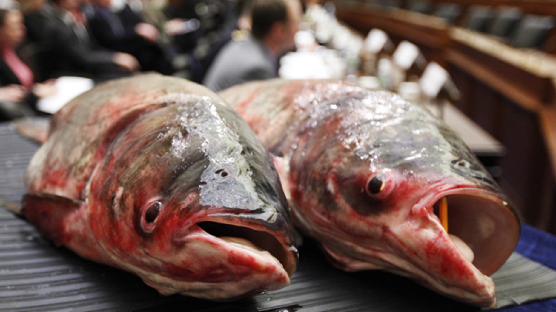 supreme carp asian Michigan court