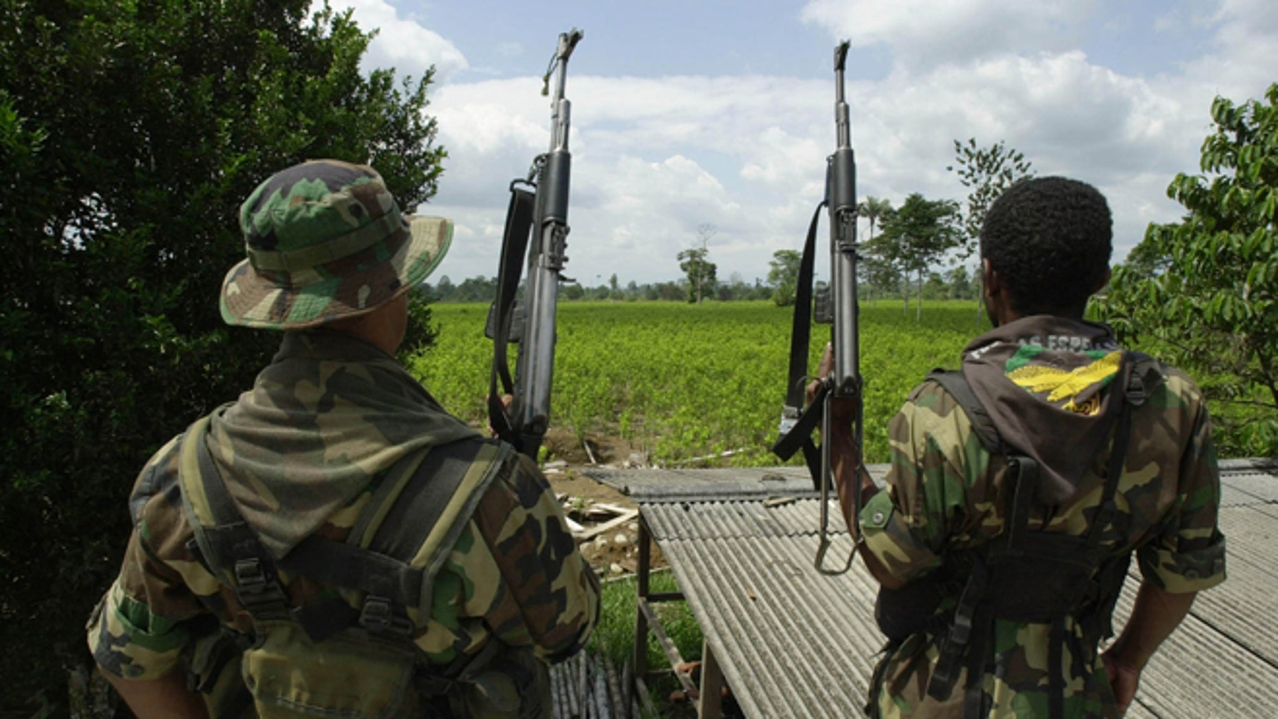 384090 01: ***EXCLUSIVE*** Two members of the AUC, the United Self Defense Force of Colombia, the extreme right paramilitary group, patrol a coca leaf plantation where a manual eradication of the coca leaves has gone into effect January 8, 2001 in the province of Putumayo, Colombia. Since the U.S. aid plan for Colombia began last December 15, the AUC are manually destroying coca leaves with machetes in and around the vast areas of coca leaf plantations south of Putumayo. The Colombian leftist guerrilla group, the FARC, is attempting to take control of areas that were under their control, not more than a year ago. (Photo by Piero Pomponi/Newsmakers)