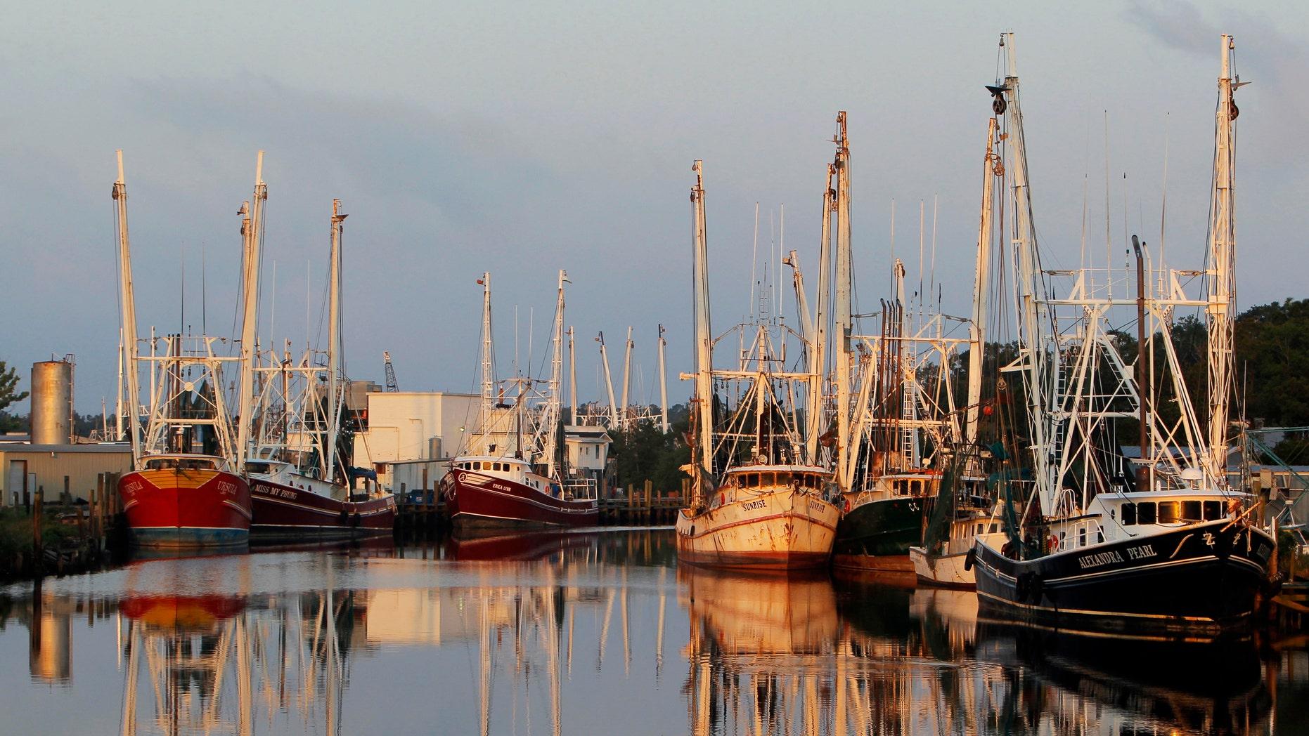 FILE: May 8, 2010: Gulf Coast fishing boats docked in the harbor at Bayou LaBatre, Alabama.