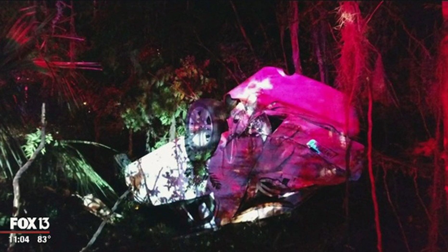 The scene after a car crash early Sunday in Inverness, Fla.