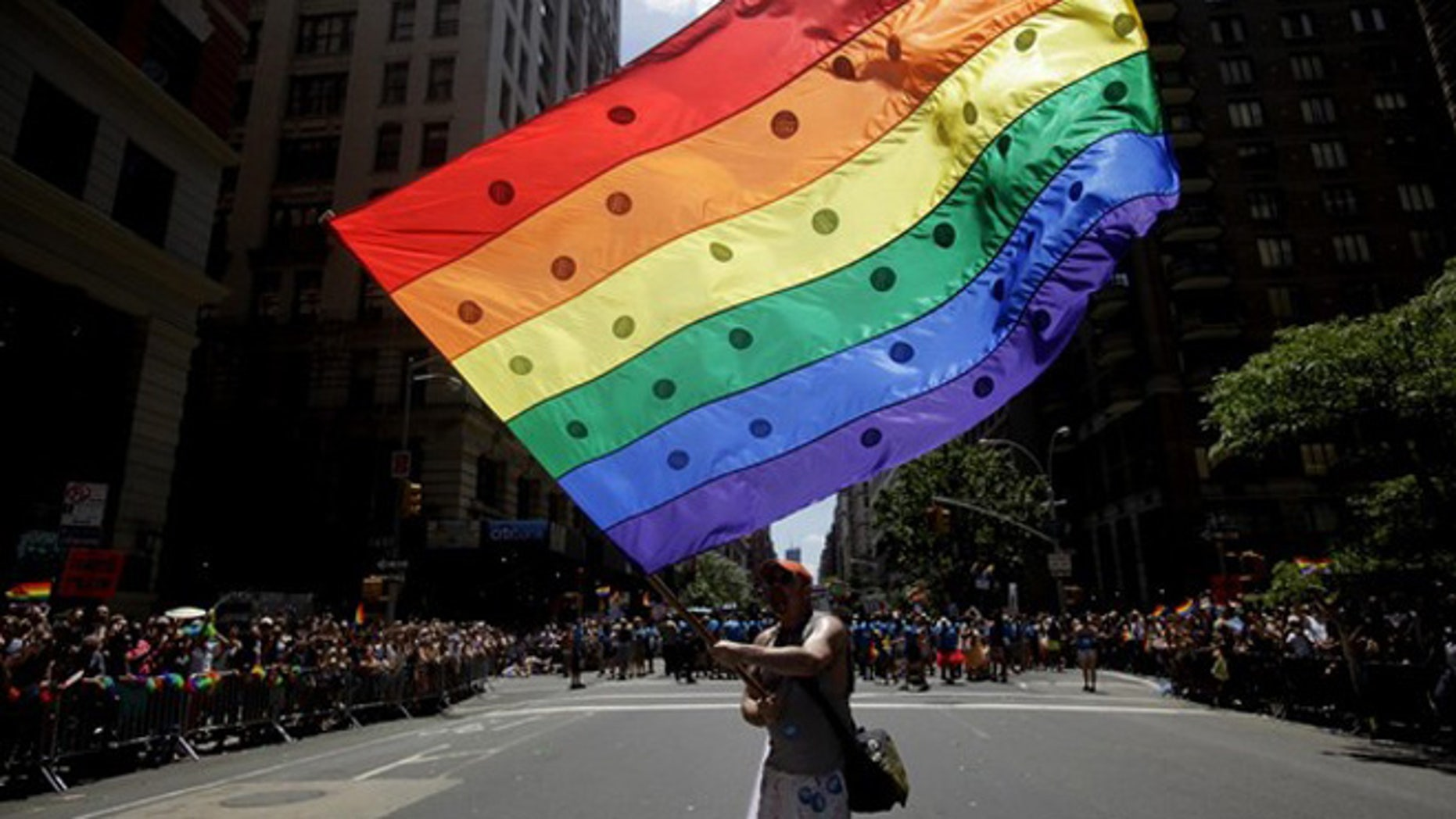 June 24, 2012: A man waves a large rainbow flag in the street during the Gay Pride Parade in New York.