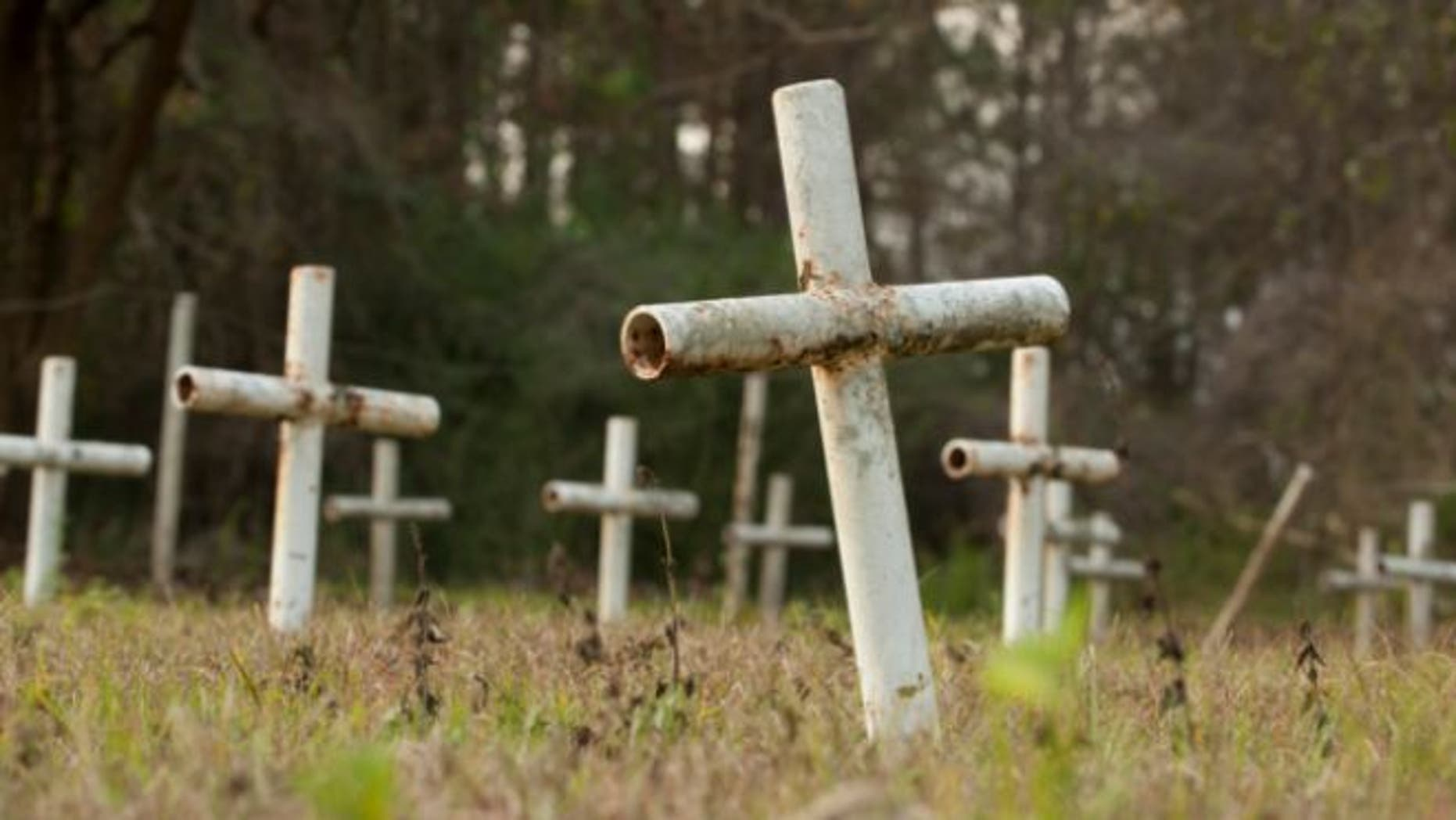 FILE: Dec. 10, 2012: White metal crosses mark graves at the cemetery of the former Arthur G. Dozier School for Boys in Marianna, Florida.