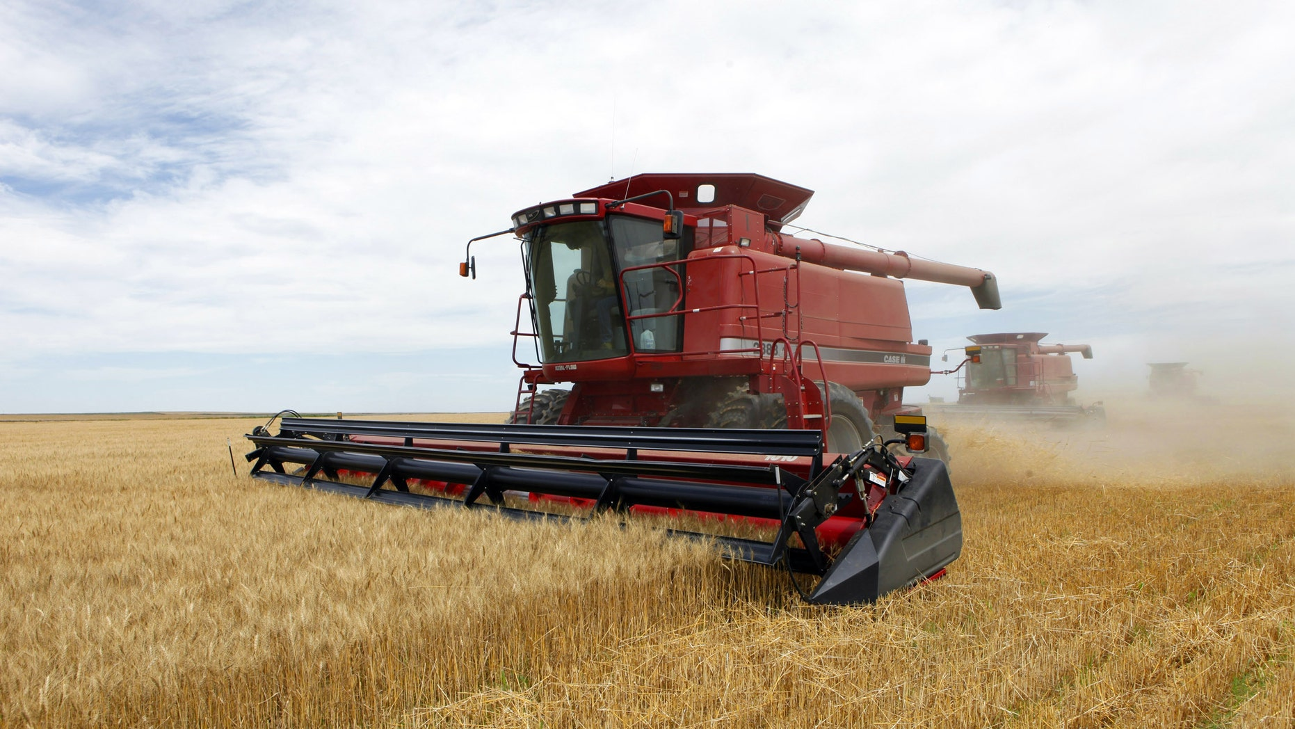 Three combines harvest the winter wheat on the Cooksey farm near Roggen, Colo.