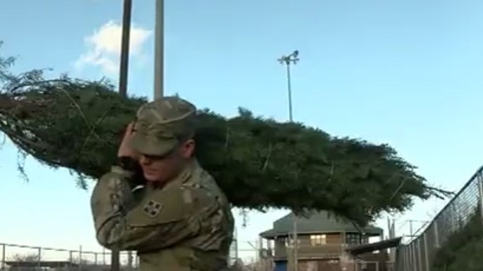 A special program is giving at least 500 military families free Christmas trees.
