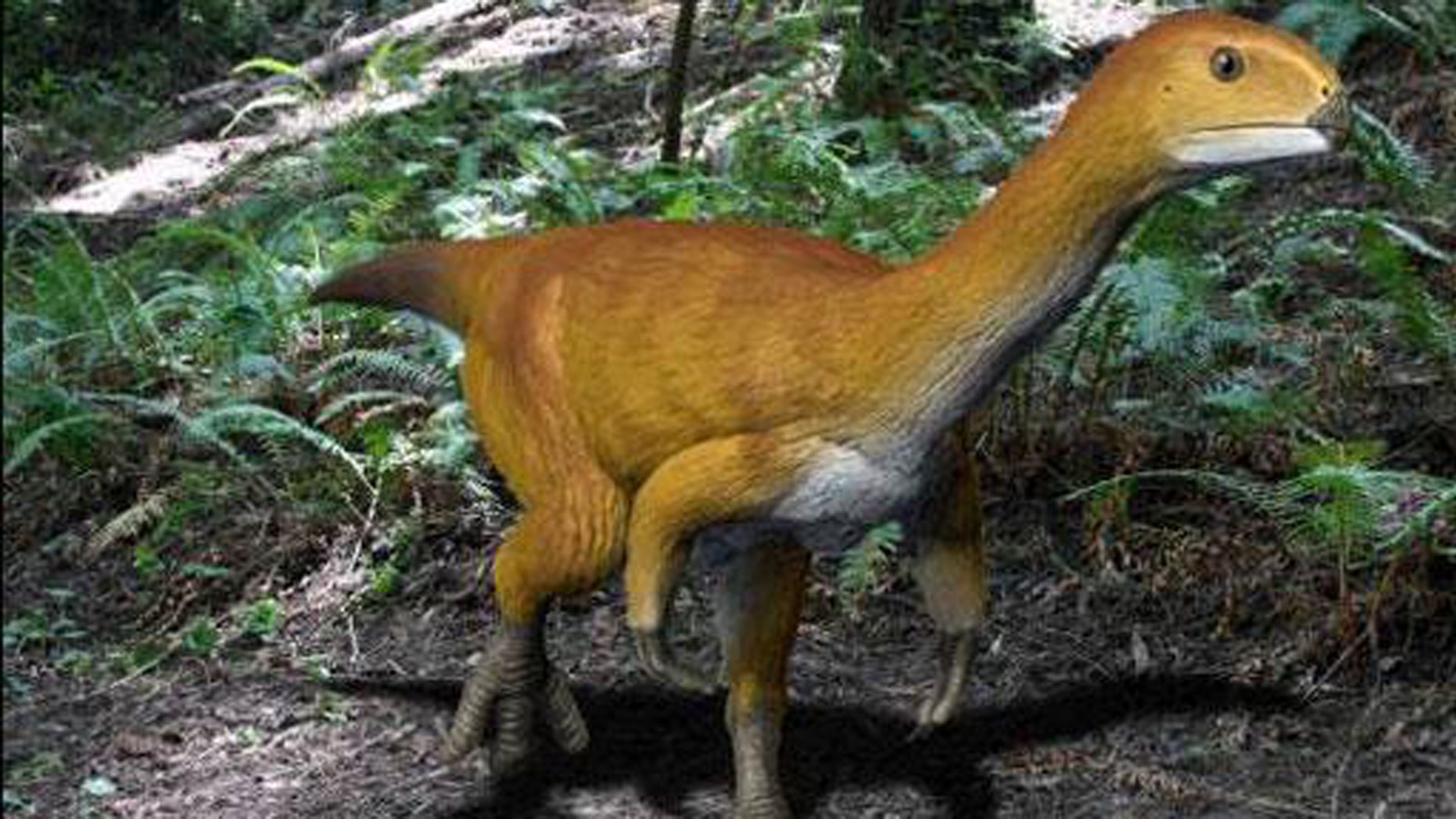 Life reconstruction of Chilesaurus diegosuarezi  (Credit: Nobu Tamura)