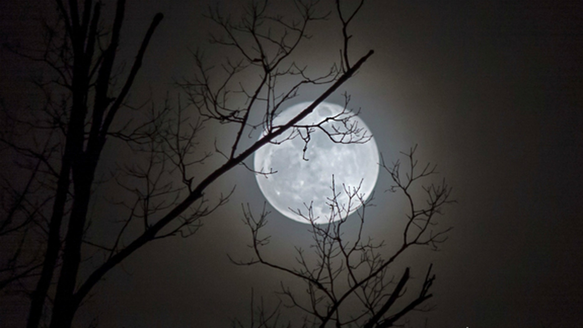 The full moon, captured by astrophotographer Jennifer Rose Lane on Jan. 5, 2015, in Chapmanville, West Virginia. Tonight (July 31) there will be a Blue Moon in the sky.