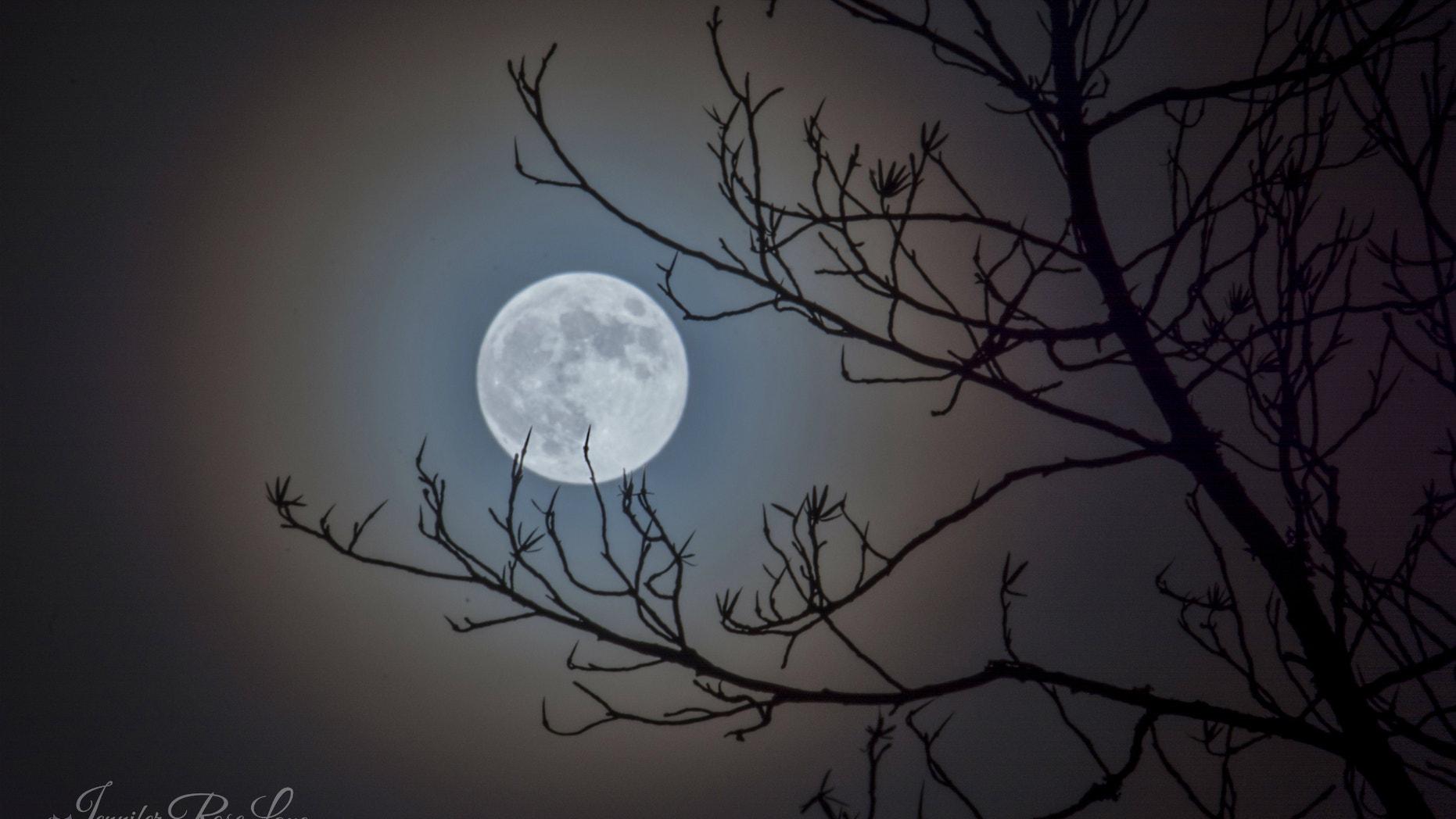 March 2016 Full Moon - Jennifer Rose Lane