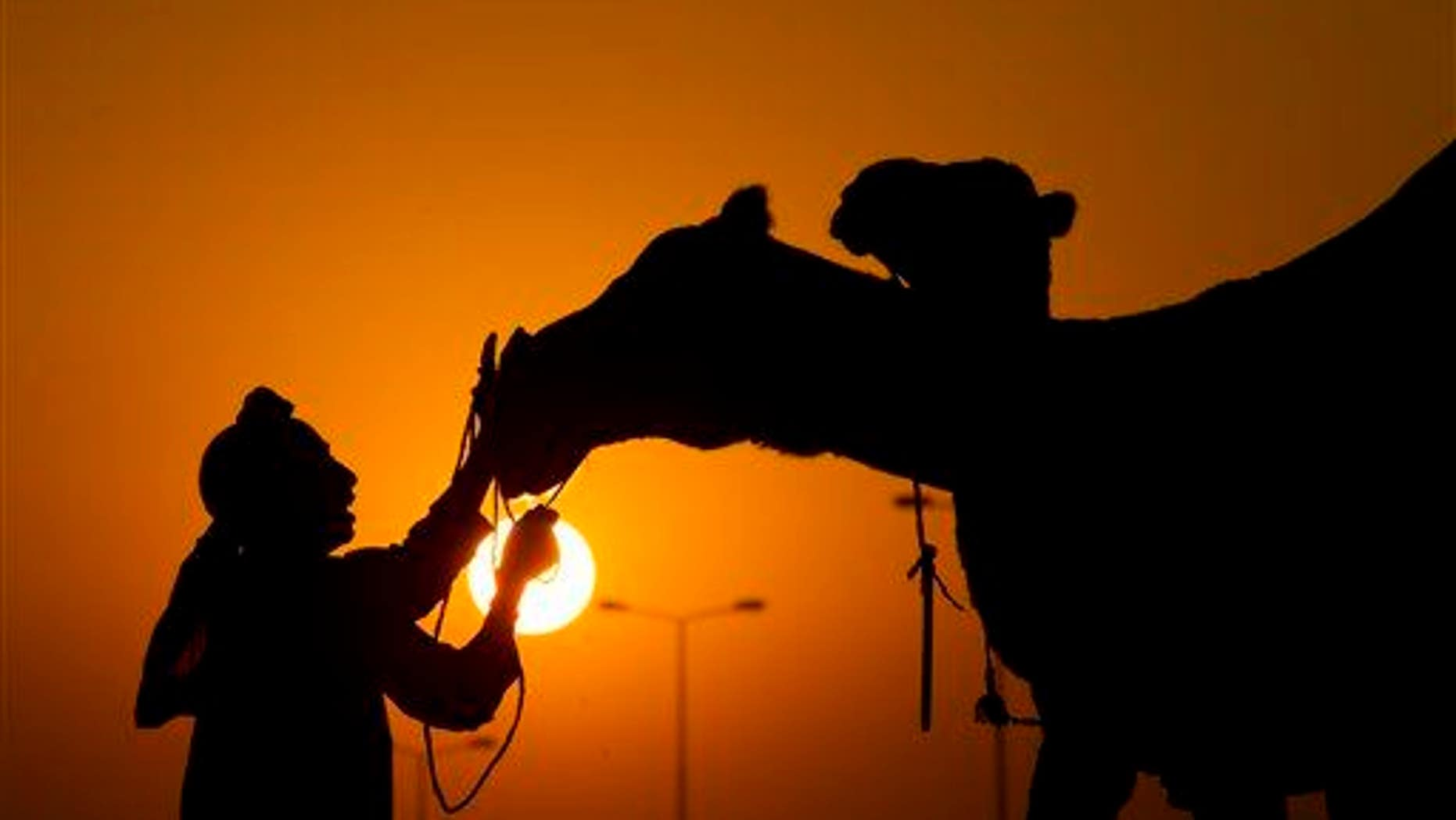 A camel milk seller comforts his camel at a roadside in Islamabad, Pakistan.