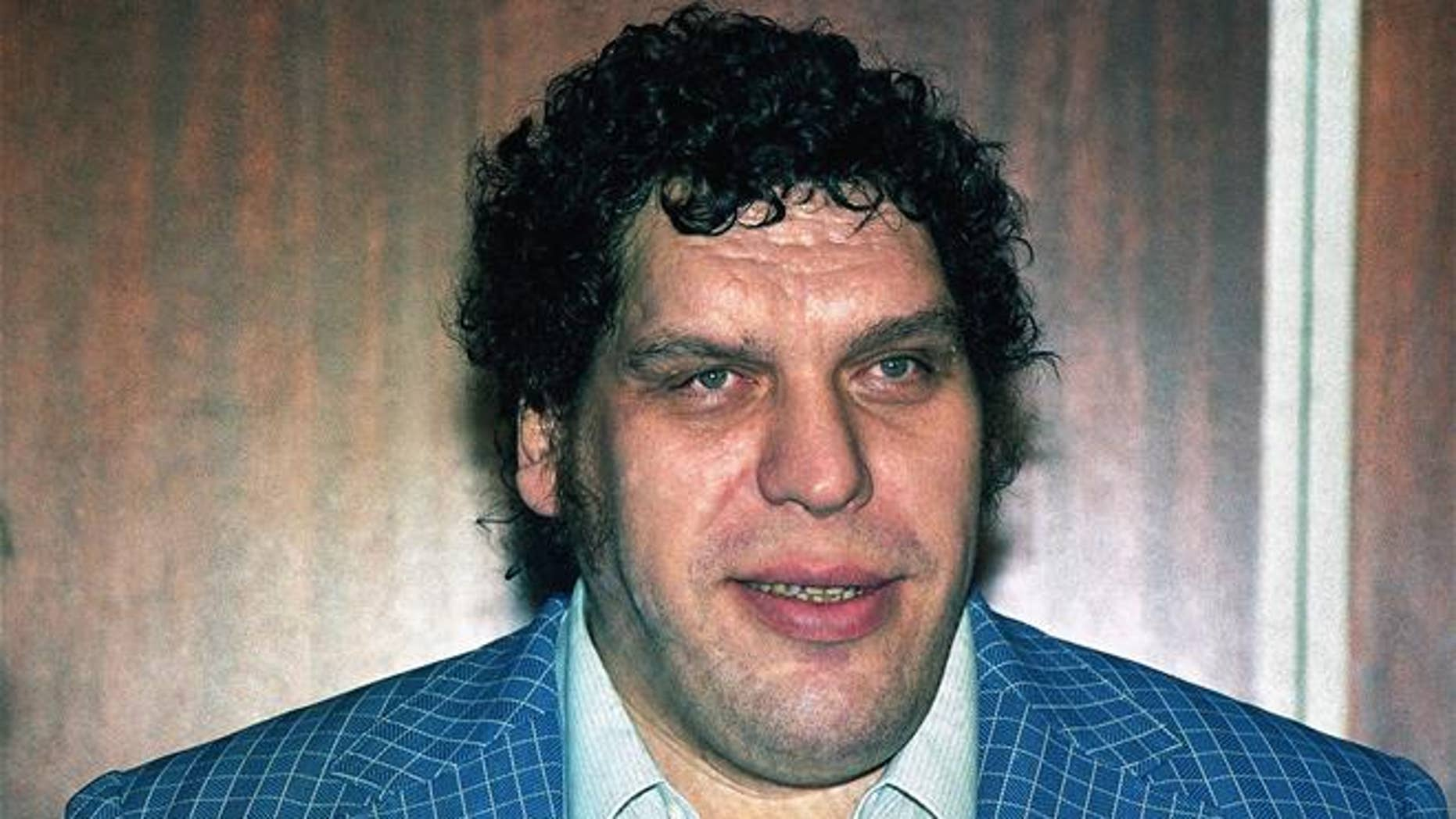 A 1988 file photo shows professional wrestler Andre the Giant.