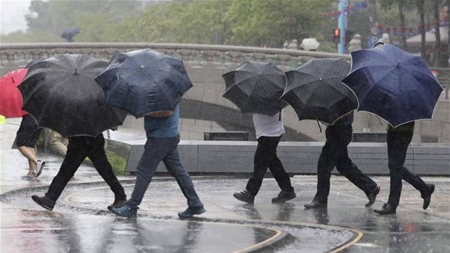 People hold umbrellas in the rain.