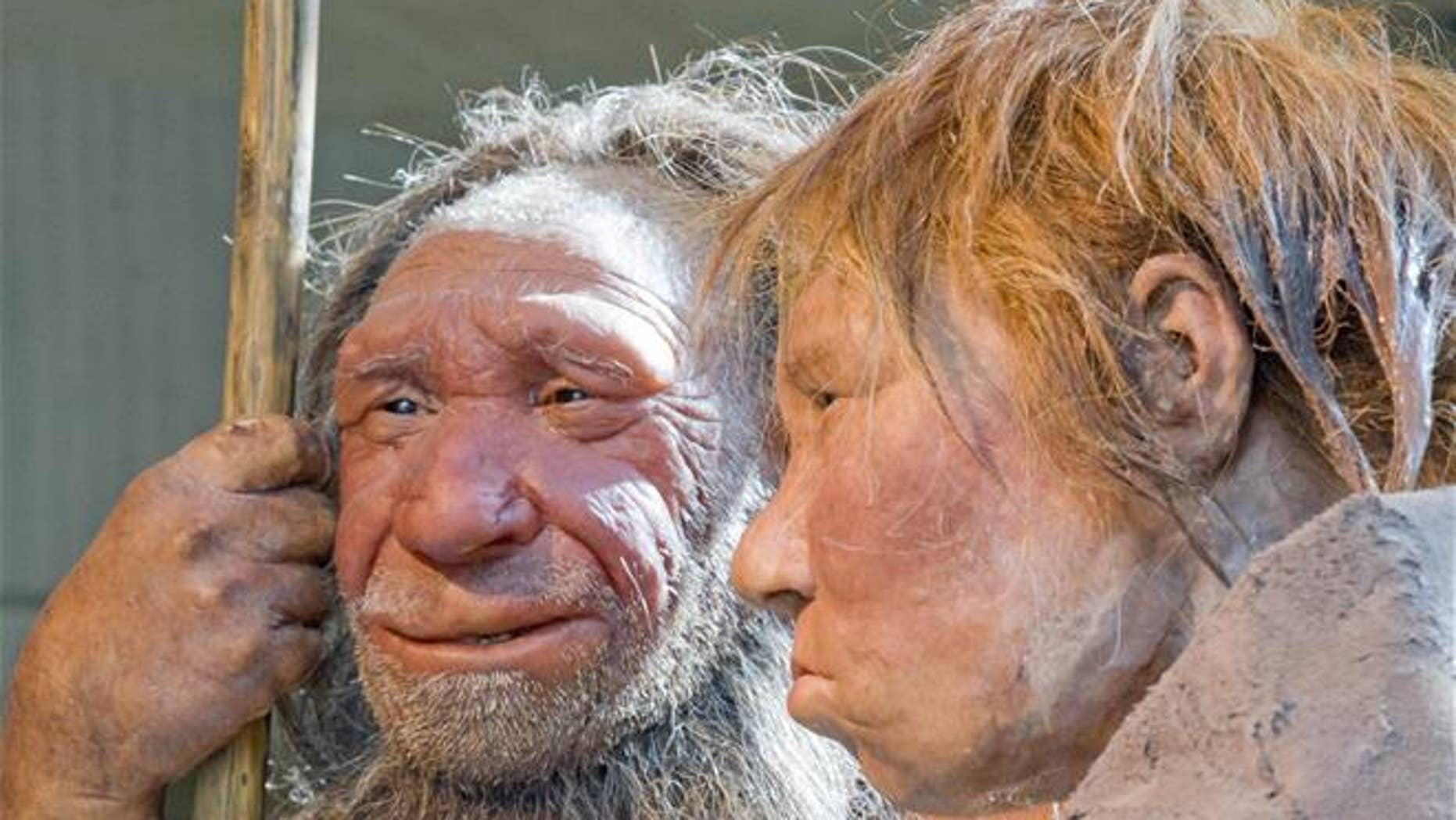 """This March 20, 2009, file photo shows reconstructions of a Neanderthal man named """"N,"""" left, and woman called """"Wilma,"""" right, at the Neanderthal Museum in Mettmann, Germany."""
