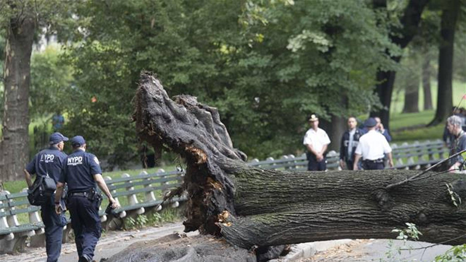 New York City Police officers walk past the base of an overturned fallen tree Aug. 15 in New York's Central Park. A woman is suing the city after the tree fell on her and her three young children.