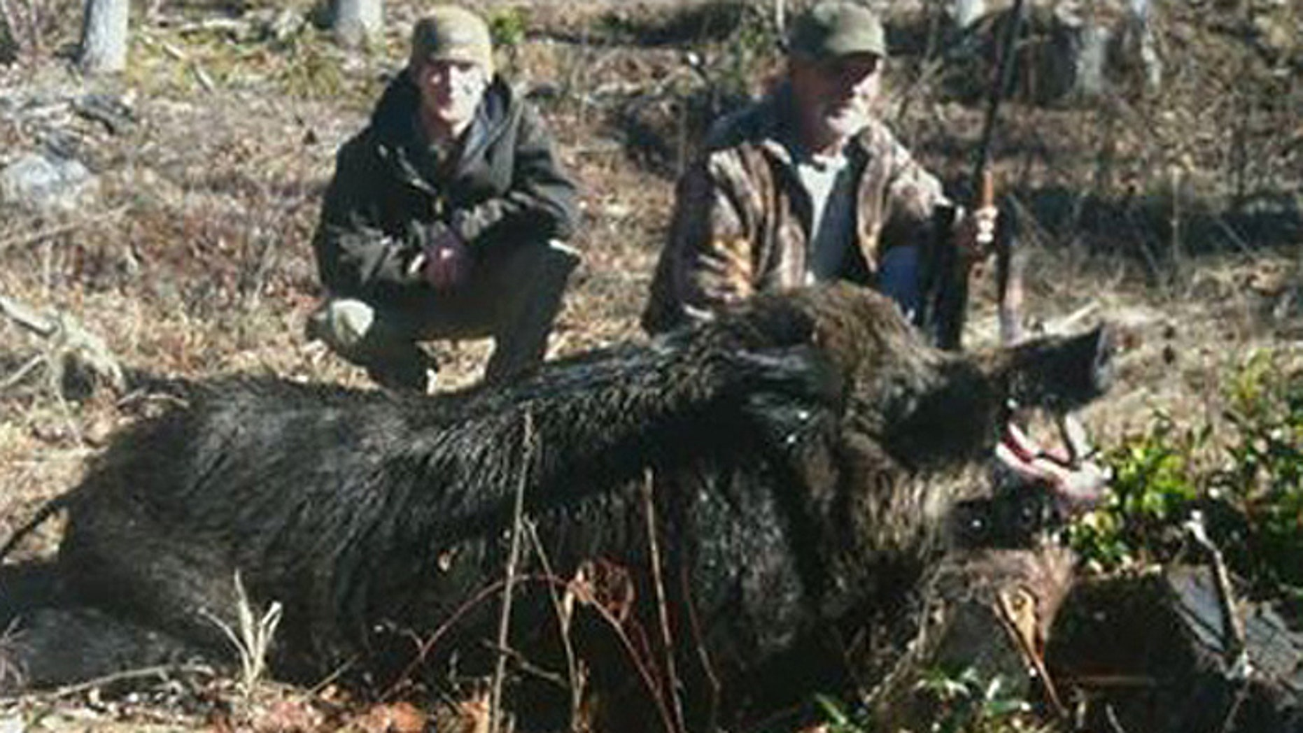 Bruce Florence and his son, Jonathan Florence, bagged this enormous wild boar in North Carolina earlier this month.
